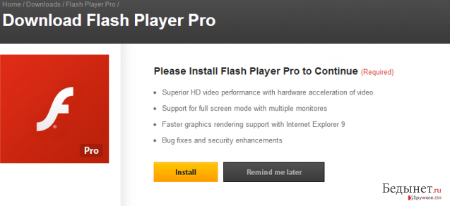 Flash Player Pro virus снимок