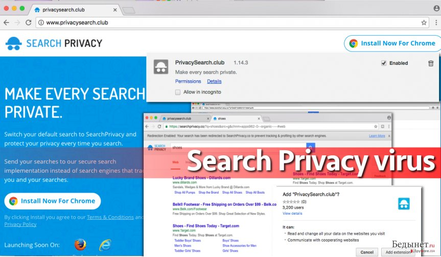 Search Privacy virus